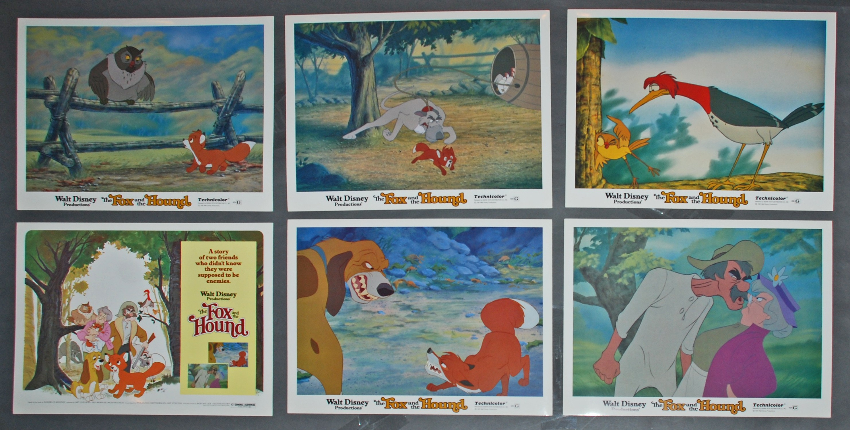 Original Walt Disney 6 Lobby Card Set From The Fox And The